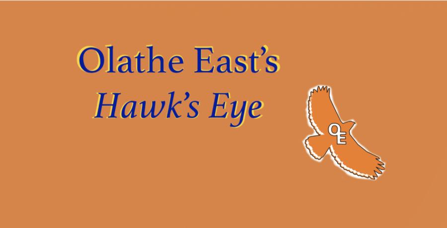 OE Hawk's Eye